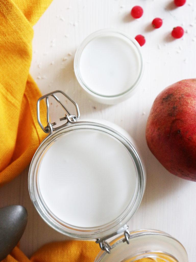 yogurt di cocco fatto in casa